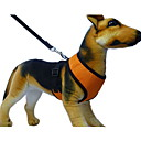 Soft Net Harness for Pets Dogs with Leash (Assorted Colors)