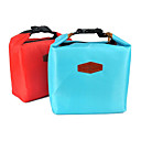 2013 Hot-venda portátil multifuncional Nylon Térmica Lunch Bag (cores sortidas)