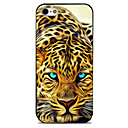 Buy Creative leopard Pattern Painted TPU Material phone Case iPhone 7 7plus 6S 6plus SE