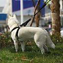 Buy Pet Dog Leash Large Gou Sheng