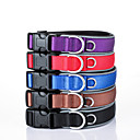 Buy Dog Nylon Reflective Adjustable Safety Training Collar Solid Red Black Blue Brown Purple