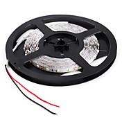 5M 20W 300x3528 SMD 흰색빛 LED 스트립 램프(12V)