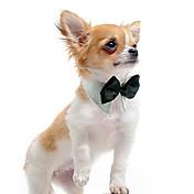 강아지 매다/보타이 강아지 의류 웨딩 화이트 오렌지 그린