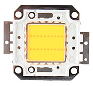 DIY 20W 1600-1800LM Warm White Light LED Emitter (32V)