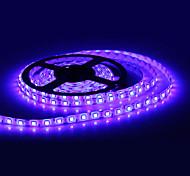 Waterproof 5M 300x5050 SMD Blue Light LED Strip Lamp (12V)