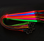 Candy Color LED Safety Nylon Leash for Pets Dogs (Assorted Colors, Sizes)