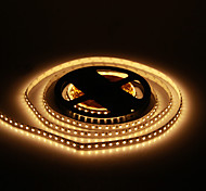 5M 48W 120x3528SMD 1800-2400LM 2800-3200K Warm White Light LED Strip Light (DC12V)