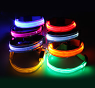 Dog Collar LED Lights White / Green / Blue / Pink / Yellow / Orange Nylon