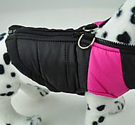 Dog Coat Green / Blue / Pink Winter ClassicDoglemi