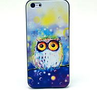 Colourful Owl Cartoon Pattern Hard Case for iPhone 5C