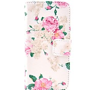 Big Rose Flower Pattern Full Body Leather Case with Card Holder for iPhone 5C