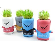 Naughty historieta creativa Lang Escritorio Mini planta de los bonsais de la hierba de la muñeca planta de la Oficina Verde