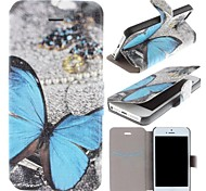Beautiful Blue Butterfly Pattern Clamshell PU Leather Full Body Case with Card Slot for iPhone 5/5S