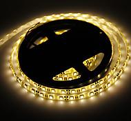 5M 60W 60x5050SMD 3000-3600LM 3000-3500K lumière blanche chaude étanche LED Light Strip (DC12V)
