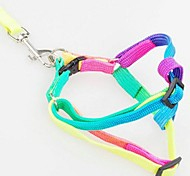 Colorful Nylon Pet harness Dog Leash for Pets Cats Dogs