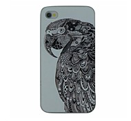 Serious Parrot Pattern PC Hard Back Cover Case for iPhone 4/4S