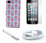 Pineapple Pattern PU Leather Case and Screen Protector and Stylus and Cable for iPhone 4/4S