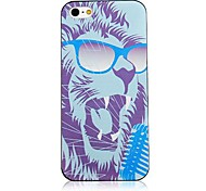 Cool the Lion Pattern Black Frame Back Case for iPhone 5/5S