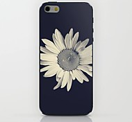 Black Flowers Pattern hard Case for iPhone 6