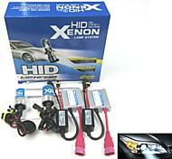 borsee ® HID-Xenon-Lampe H1 12V 35W ac Automobil Xenon-Set (zufällige Farbe)