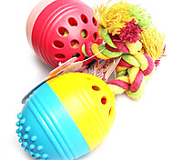 Cute Egg Shaped Toys With Bell For Pet Dogs(Random Colour)