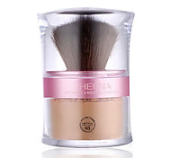 Best Selling Professional Make Up Face Powder