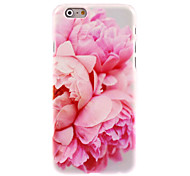 Blossomy Rose Design Hard Case for iPhone 6 Plus