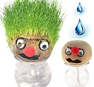 Creative Grow A Head Grass Head Doll Magic Grass Bonsai DIY Gift for Decoration (Random Color)