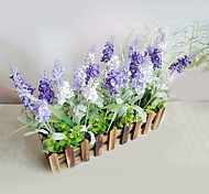 Cloths Three Colour Lavender With 30cm Brown Fence