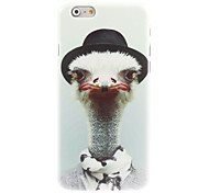 Ostrich Design Hard Case for iPhone 6
