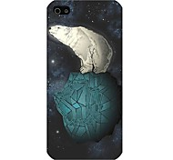 Sea Bear Pattern Hard Back Case for iphone 5/5s