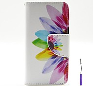 Beautiful Petals Pattern PU Leather Case Cover with A Touch Pen ,Stand and Card Holder for iPhone 5/5S
