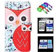 Flower Background Red Owl Full Body Case+1 HD Screen Protector+1 USB Data Transmit and Charging Cable for iPhone 6