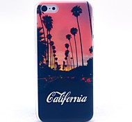 California View Pattern Hard Cover Case for iPhone 5C
