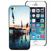 Grass and The Sea Design PC Hard Case for iPhone 4/4S