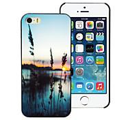 l'herbe et l'étui rigide conception de mer pc pour iPhone 4 / 4S