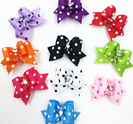 Colorful Spot Tiny Rubber Band Hair Bow for Dogs Cats with 10 Different colors(A Pack of 10)