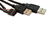 usb 10 PIN Female to 2* usb 2.0 Male Cable