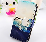 About the Sea Scenery Figure Pu Leather Case for Samsung Galaxy S2  I9100