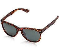 Anti-Reflective Hiking Sunglasses