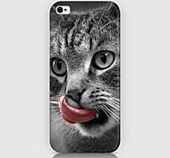 la lingua leccare il caso del modello del gatto della copertura posteriore per Phone5 caso / 5s