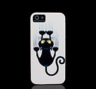 motif de chat couverture rigide pour iPhone 5 cas pour iphone 5 s