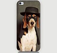 caso padrão cão fresco telefone tampa traseira caso para iphone5c