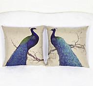 conjunto de 2 pavo real cubierta de la caja cojín almohada sofá decoración del hogar del amortiguador (17 * 17 pulgadas)