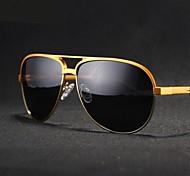 Gafas de Sol hombres's Ligeras / Polarizada Browline Negro / Plata / Dorado Gafas de Sol / Deportes Completo llanta