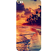 Storm Pattern Phone Back Case Cover for iPhone5C