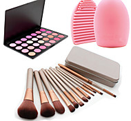 12Pcs Cosmetic Makeup Tool Eyeshadow Blush Foundation Brush Set Box +28Colors Blush Palette+1PCS Brush Cleaning Tool