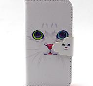 weiße Katze Muster PU-Leder-Tasche für iPhone 4 / 4S