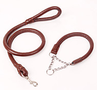 Nylon Real Leather Leashes Set for Dogs