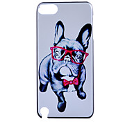 modello del cane occhio telefono materiale del pc glassato casefor ipod touch 5